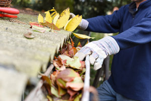 Gutter cleaning in North Brunswick, gutter clogged with leaves being cleaned out by a gloved hand